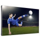 Panasonic TH-55LFV6U Video Wall Display